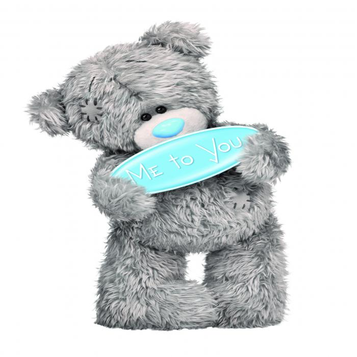 A grey teddy bear holding a blue sign and standing in front of a white background.
